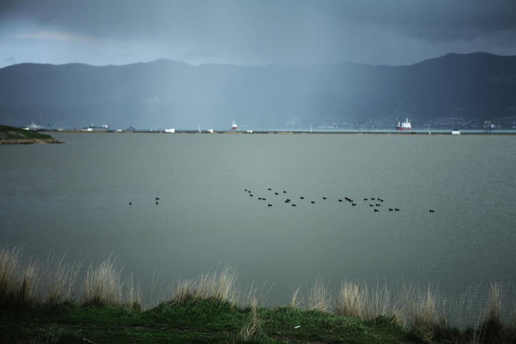 Малая земля. Суджукский лиман. Фото Андрей Бондаренко
