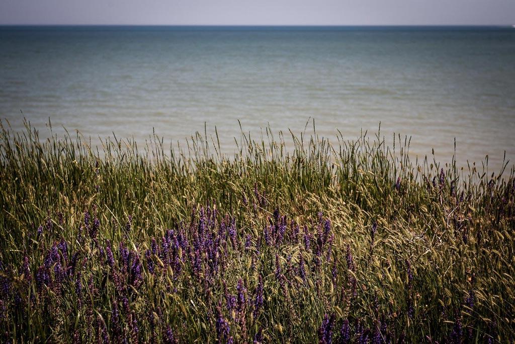 Озерейка. Высокий берег. фото Андрей Бондаренко