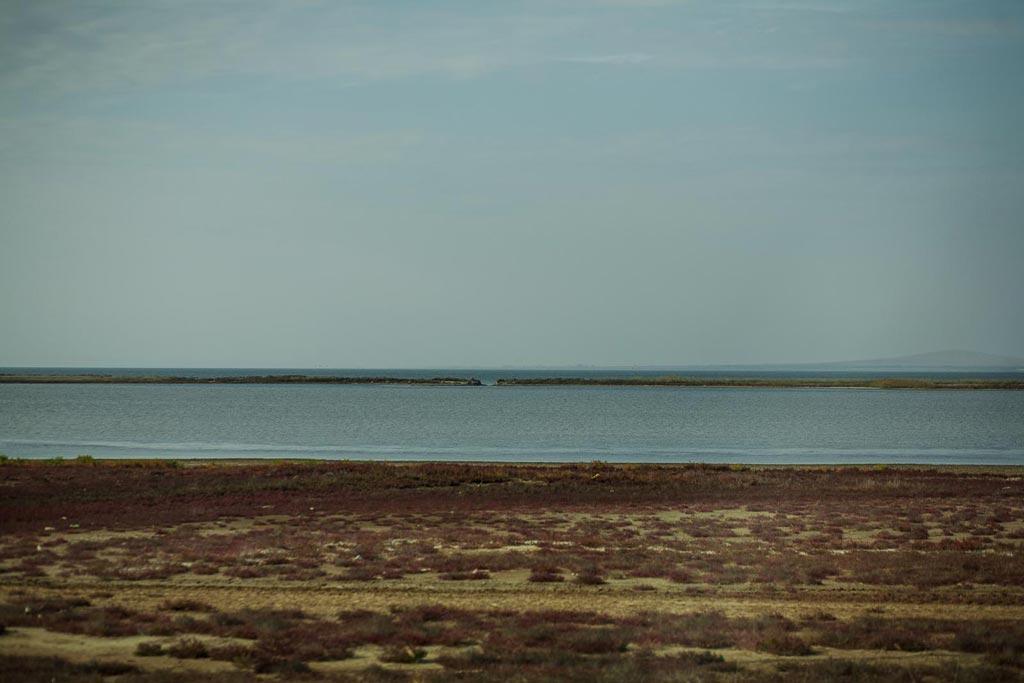 Лиманы фото Андрей Бондаренко